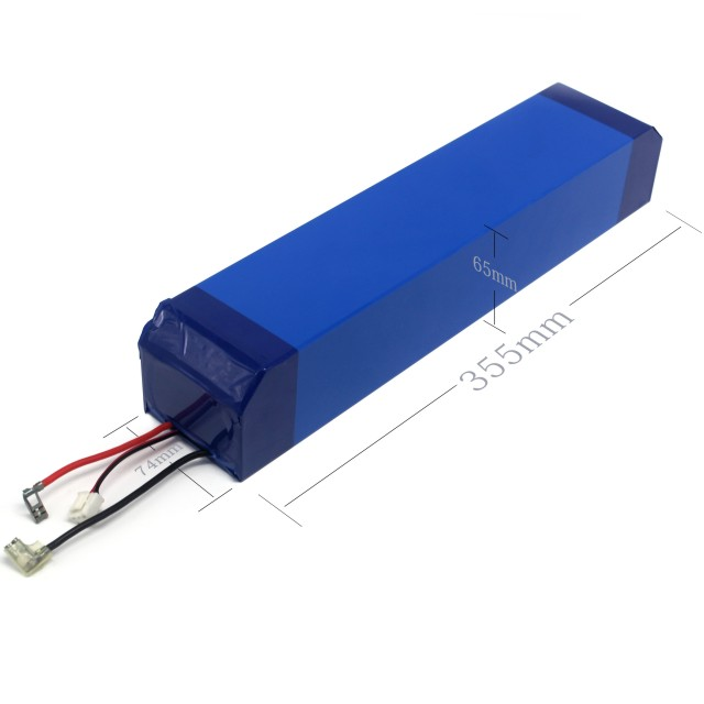 48V High Quality Customized Lightweight Li-ion Battery Packs for E-Scooters